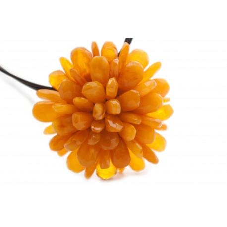 Dykumų gėlė