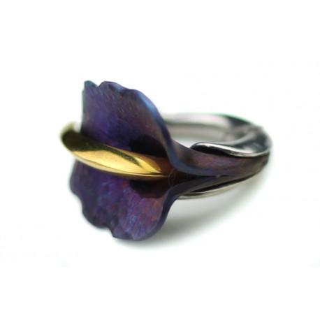 Sidabrinis žiedas su titanu ir auksuotu žalvariu.