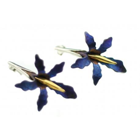Sidabriniai auskarai su titanu ir auksuotu žalvariu